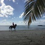 Los sábados realizan carreras de caballos en la playa