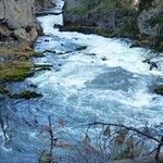 Foto de Trail to Benham Falls