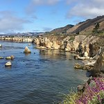 Photo of Shore Cliff Hotel