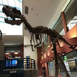 Buffalo Museum of Science의 사진