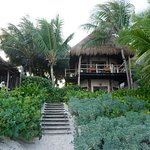 Rooms and massage hut