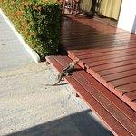 Agua Dulce Beach Resort-bild