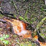 David's Mill Waterfall