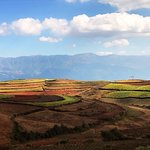Foto di Dongchuan Red Land