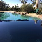 Pool - heated by nature
