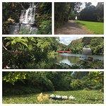 Photo de Pukekura Park