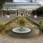 Foto de Auckland Domain