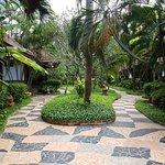 Billede af Salad Beach Resort