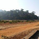 Foto de Periyar Tiger Reserve