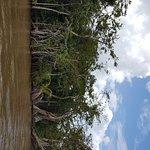 Altun Ha & The Olde Belize River