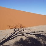 Foto Namib Desert