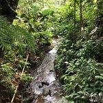 Foto de Gitgit Waterfall