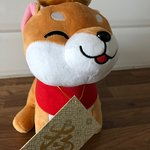 We received this gift in honor of the Year of the Dog.