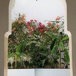 Photo de Riad l'Orangeraie