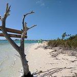 Photo de Little Water Cay