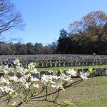 Andersonville POW Cemetery