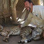 Photo of Cango Wildlife Ranch