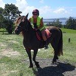 Foto de Horse Trek'n