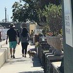 ภาพถ่ายของ Balboa Island Ferry