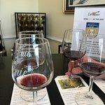 Wine tasting at Doukenie