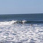 surffing in Las Penitas