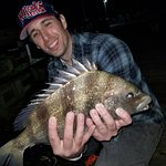 5-6 pound sheepshead everywhere if you know what to look for