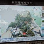 釜山冬柏島