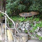 Photo of Nikko Futarasan Jinja Chugushi Shrine