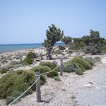 l'accès à la partie Naturagora