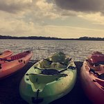 Nine Mile Pond, Everglades National Park