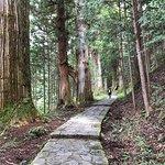 Photo of Takinoo Shrine
