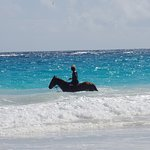 You can ride horses on the beach too!