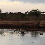 Photo of Voyager Ziwani, Tsavo West