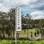 Entry to Tulloch Wines