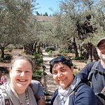 Foto de Evi Tours Israel - Private Day Tours