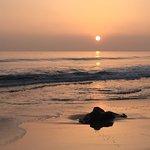 sunset at Hendry's Beach
