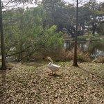 Foto de Parque de la Ciudad
