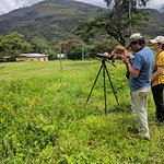 Looking for birds at the IPAL lodge, Huayopata.