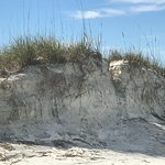 Height of dunes. Some were cut away from last storm.