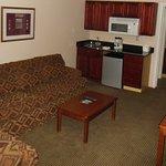 1 or 2 Bedroom Suite  ( Living Room )