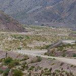 un beau paysage cactus montagne colorée et que des virages