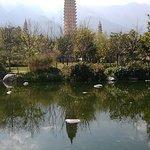 wx_camera_1520492610034_large.jpg