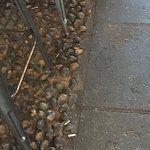 Cigarette butts on the floor in the illegal smoking area