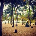 Foto de Mangrove Garden Beach Cabanas