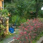Photo of Albizia Lodge