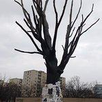 Elm tree, symbol of pawiak prison