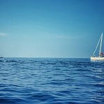 Foto de Mirissa Water Sports