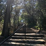 Steps leading to the top of Mt. Bonnell