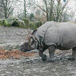 Photo of Warszawskie Zoo