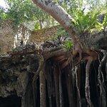 Photo of Cenote Maya Park